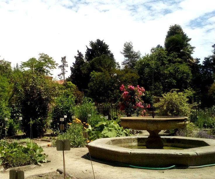 Padova giardino