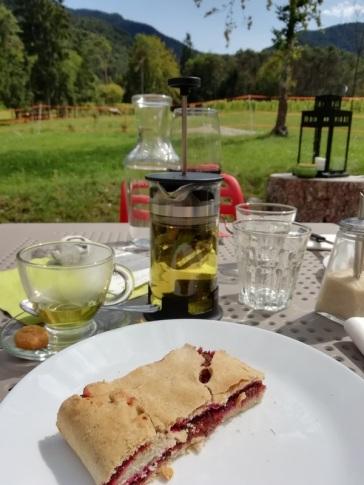 Pranzo bio al Bosc del Meneghì